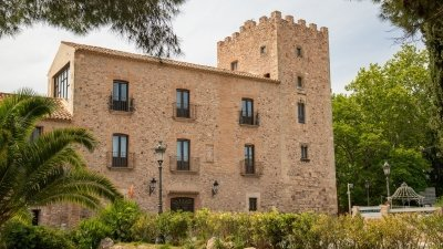 FLAMENCO & CASTILLO de VILAFORTUNY (SIGLO XII).